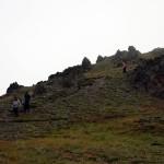 On Ridge
