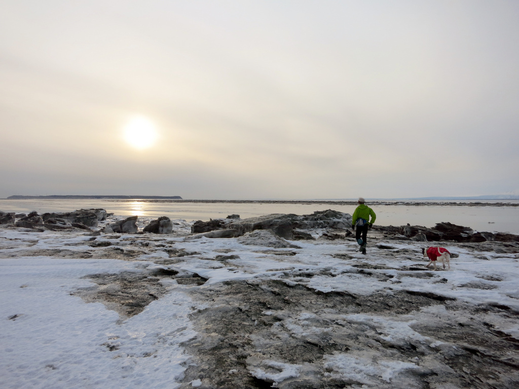 """On the """"Beachcombing"""" Epic (L H, 3/21/2013)"""