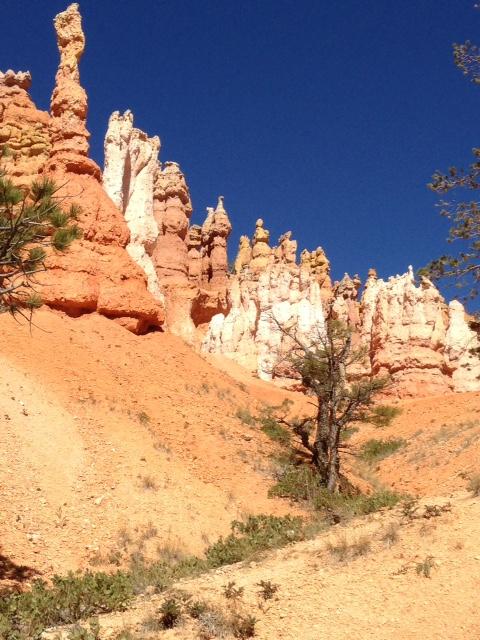 Bryce Canyon NP hoodoos (AVH photo).