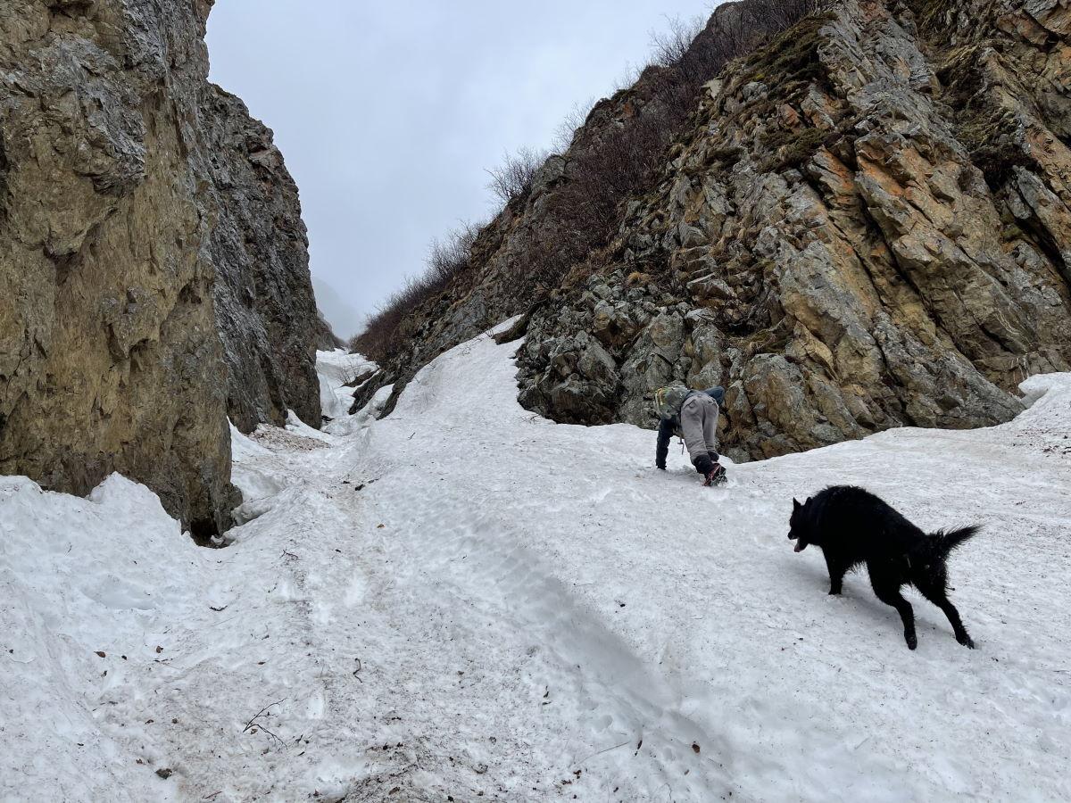 04/29/2021 – Snow Thrills